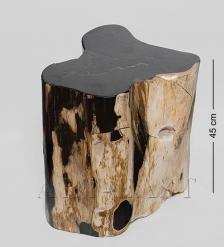 TB628 Камень древесный  Хранящий память  90 кг