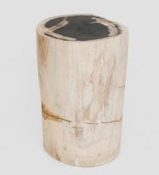 TB630 Камень древесный  Гостья из прошлого  39 кг