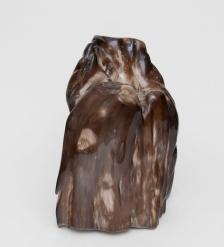 TB636 Камень древесный  Эпоха динозавров  20 кг
