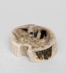 TB637 Камень древесный  Миллионы колец