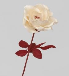 TR 401 Распустившаяся роза