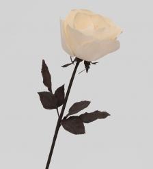 TR 403 Роза