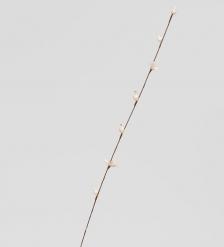 TR 414 Ветка жасмина