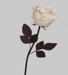 TR 419M Роза