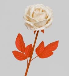 TR 419L Роза