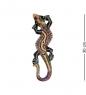 20-043 Панно настенное Геккон  албезия, о.Бали  30 см
