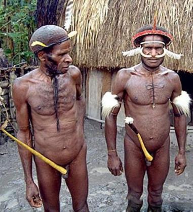 27-033 Котека Папуаса  Папуа