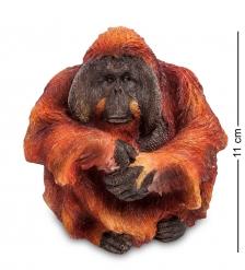 WS-765 Статуэтка «Орангутанг»