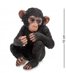 WS-767 Статуэтка «Детеныш шимпанзе»