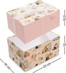WA-50-11/4 Коробка  Прямоугольник