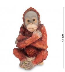 WS-799 Статуэтка «Детеныш орангутанга»