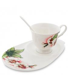 JS-41 Чайная пара  Королевская орхидея   Pavone