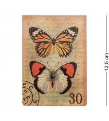 TD-41 Записная книжка  Бабочки