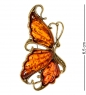 AM-2081 Брошь  Бабочка   латунь, янтарь