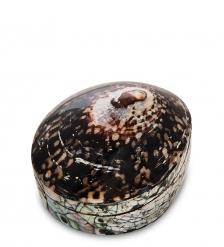 54-040 Декоративная шкатулка  Ракушка
