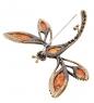 AM-1660 Брошь  Стрекоза Красотка   латунь, янтарь