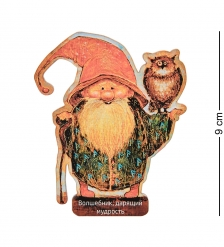 ANG-882 Магнит деревянный «Волшебник, дарящий мудрость»