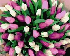 HBK-36 Картина по номерам  Тюльпаны   сложно
