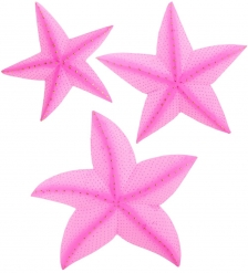 63-050-02 Панно  Морская звезда  набор из трех  о.Бали