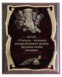 Панно Сова Учитель з.с.
